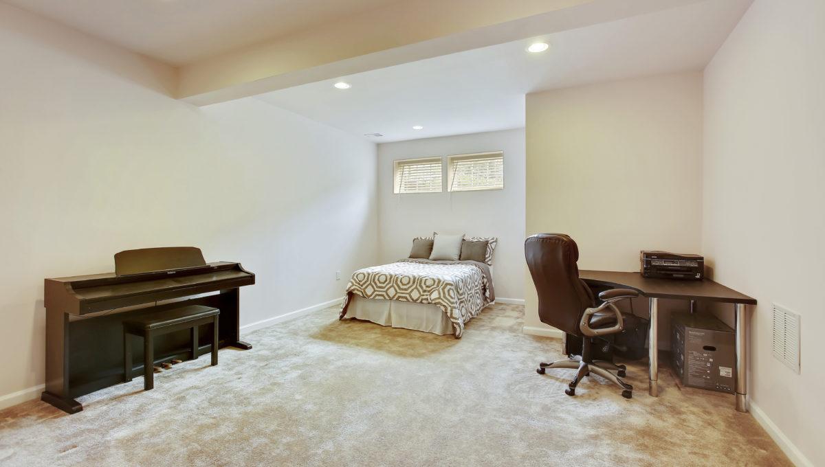 Lower Level-Bonus Room-_99A6902